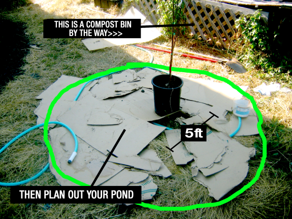 Diy greywater pond system how to guide utopia or bust for Diy pond cleaner